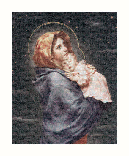 Image of MADONNA OF THE STREET  8X10