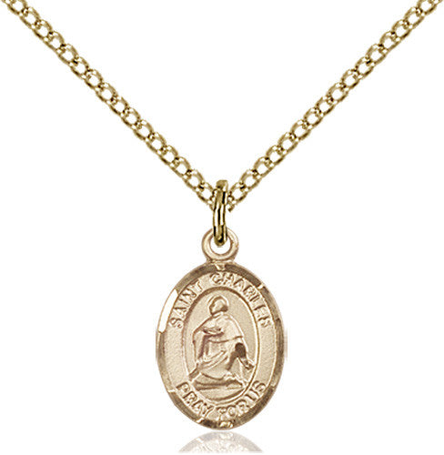 Image of St. Charles Borromeo Pendant (Gold Filled)