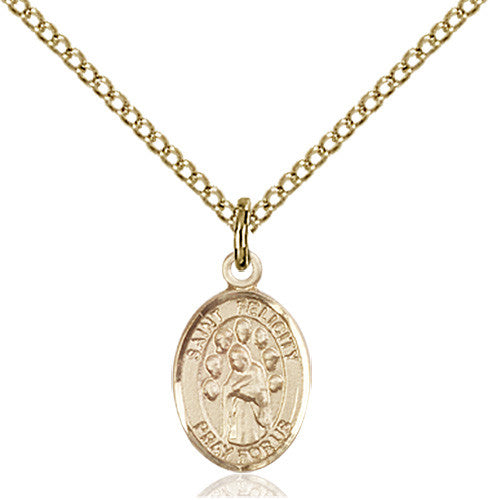 Image of St. Felicity Pendant (Gold Filled)