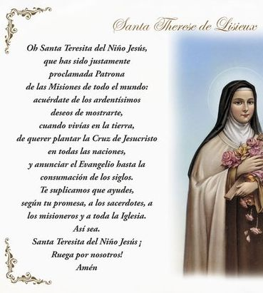 St. Therese of Lisieux 'Little Flower' Pillow Case - Spanish Prayer