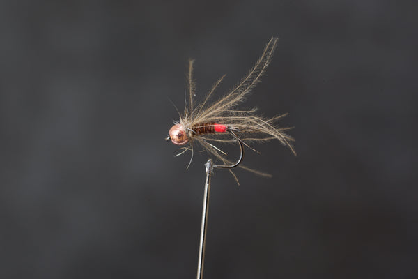 Red Arse Pheasant Tail Euro Nymph.