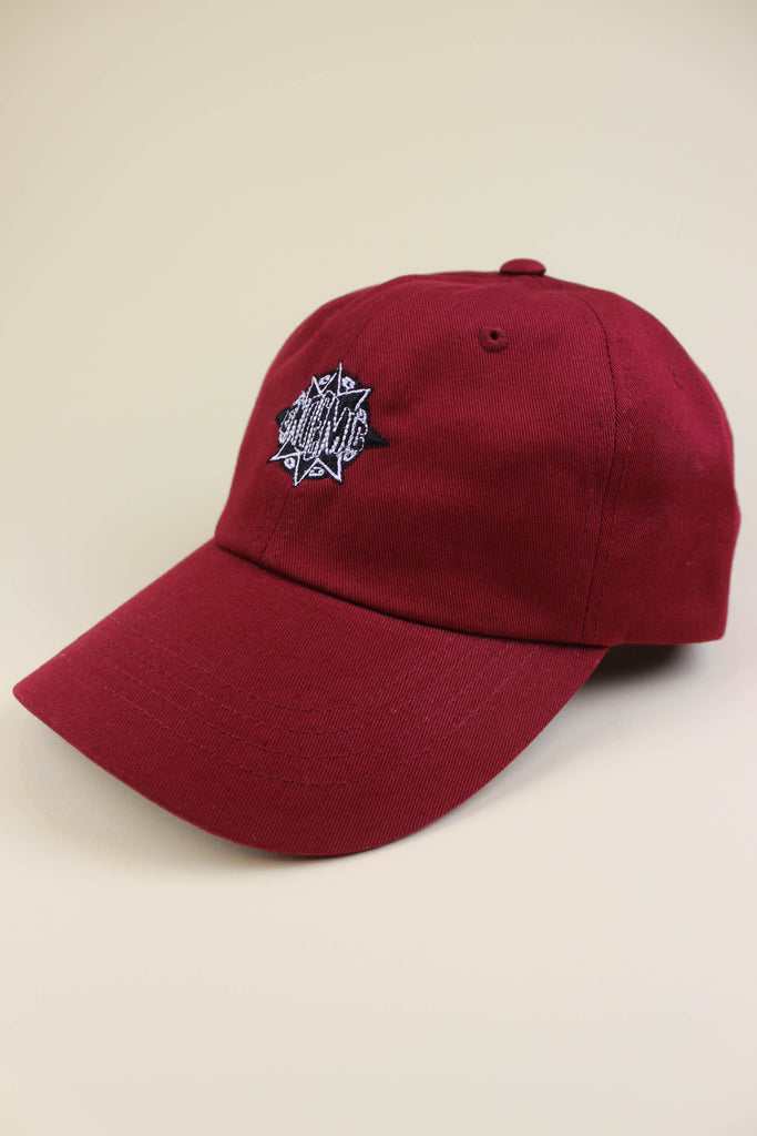 Endemic Mass Appeal Cap Burgundy - Endemic Skate Store