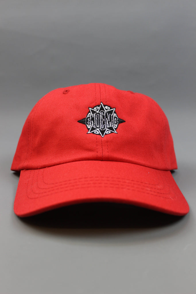 Endemic Mass Appeal Cap Red - Endemic Skate Store
