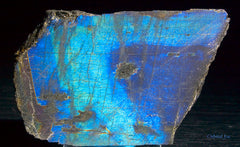 Rough cut Labradorite