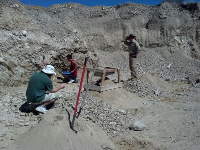Digging for Montana Sapphires