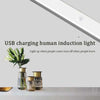 Motion-Sensing LED Light
