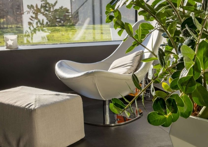 white modern armchair with white pouffe with large green plant