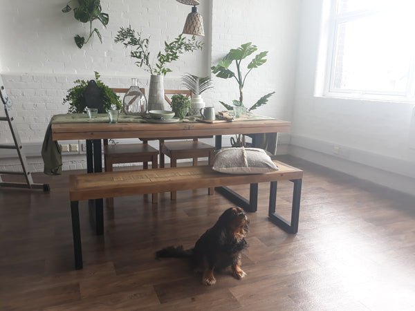 Cute dog sitting in front of our Stamford Industrial Reclaimed Wood Extending Table whilst it's being shot by our photographer.