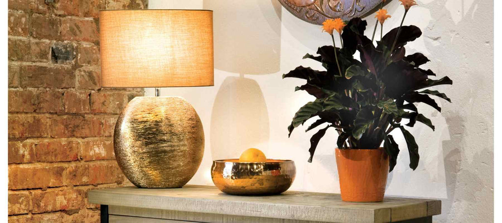 Table lamp with light on and green plant on console table