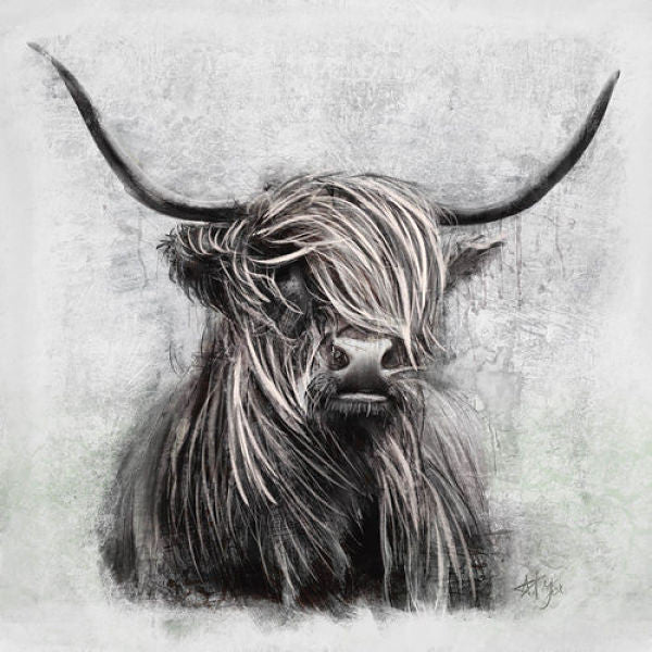 Grey Highlander Canvas Art