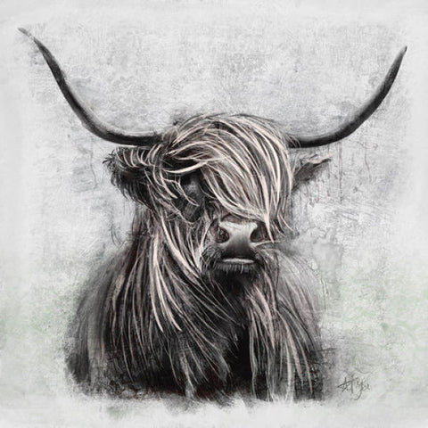 Grey Highlander Canvas Art for Wall