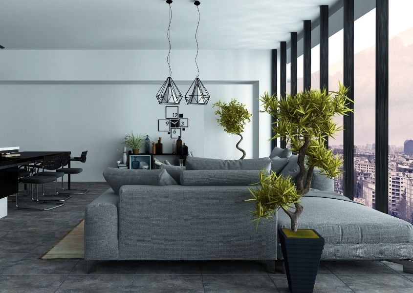 Open plan living room with grey sofa and large floor to ceiling windows, and two tall green plants