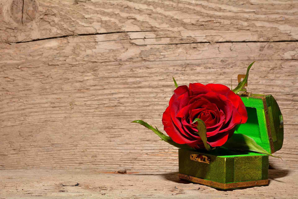 Valentines Rose on Rustic Wood