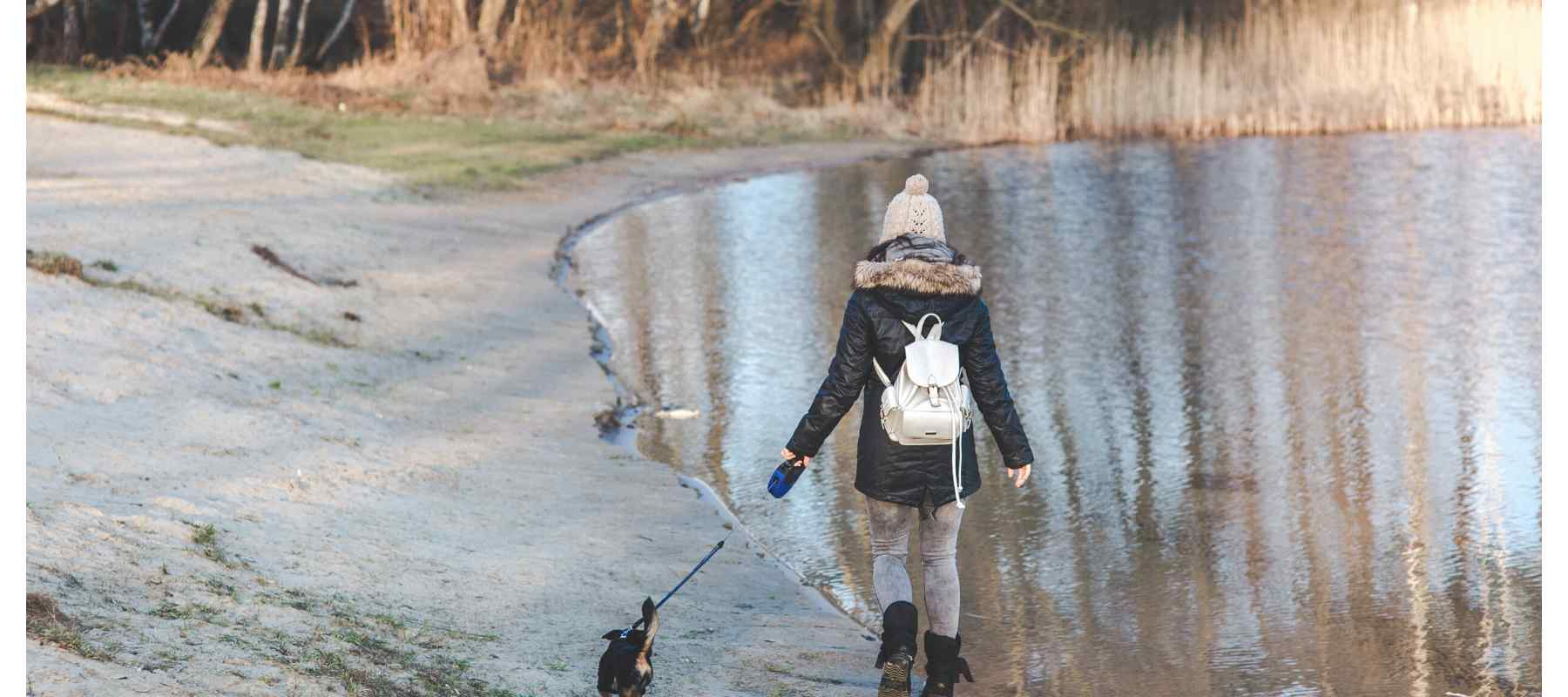Girl walking dog near pond