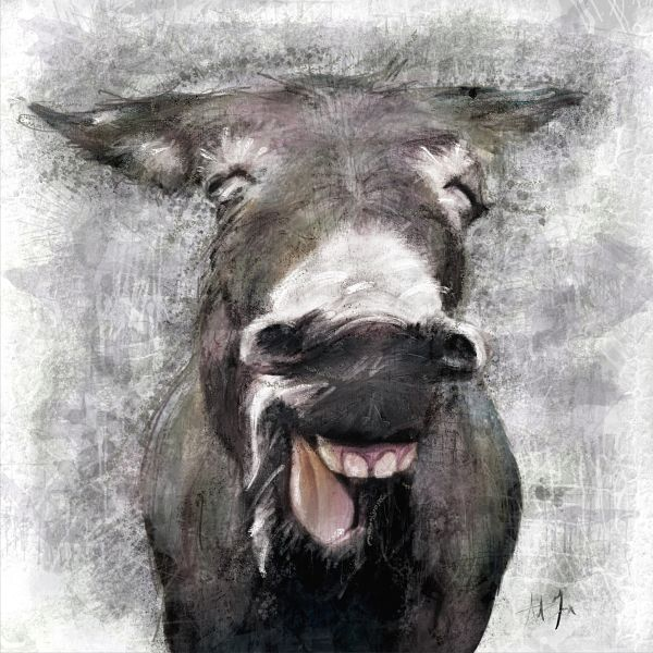Laughing Donkey Canvas Wall Art