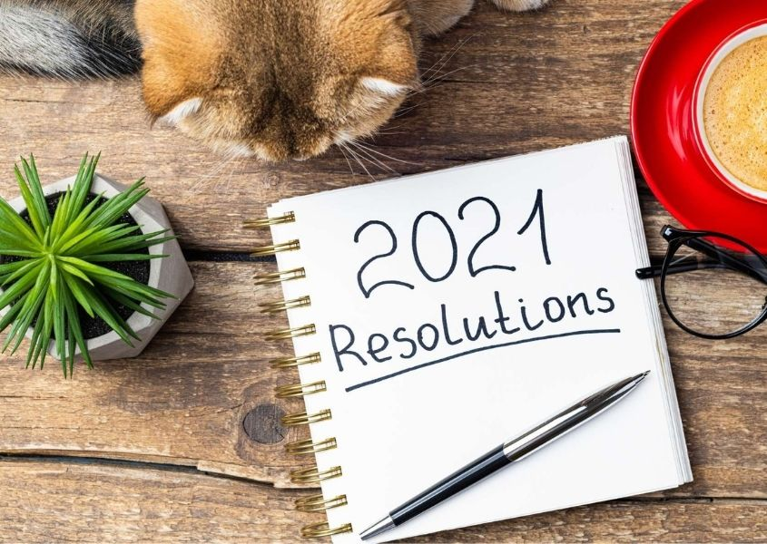 Notepad with handwritten 2021 Resolutions words on wooden table and a glimpse of a brown cat