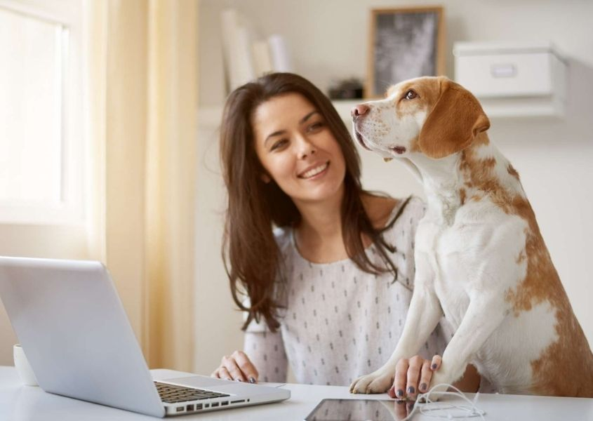 woman at a lap top with dog beside her