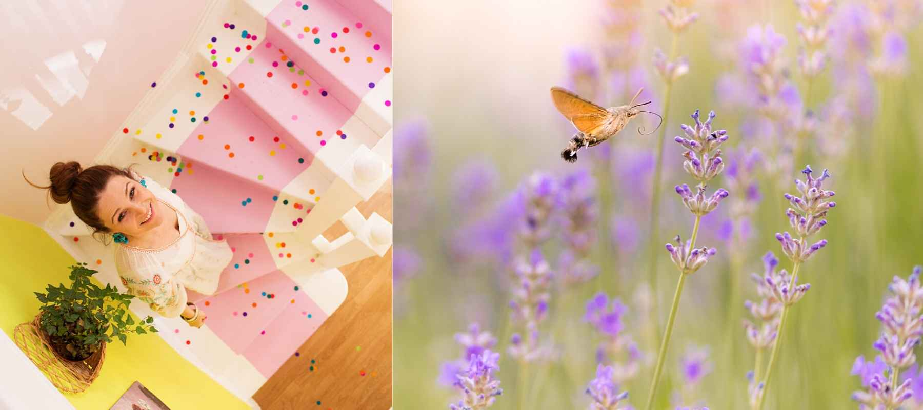 Woman looking up pink painted stairs and a butterfly in wild flowers