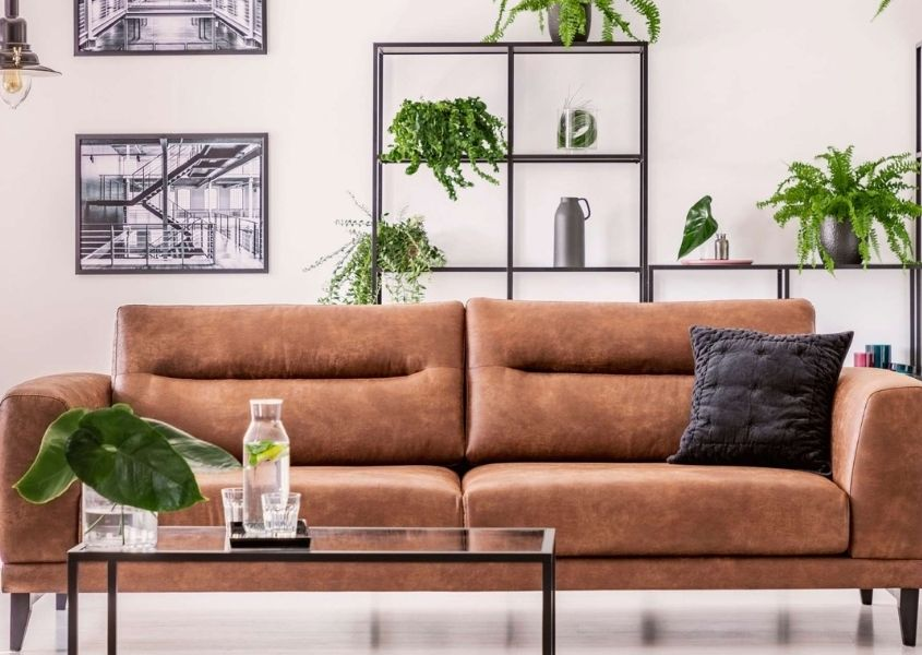 Brown leather sofa with industrial shelving and display of plants