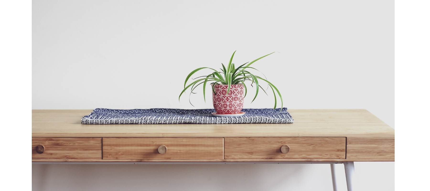 Rustic wood table in hallway with small green pot plant