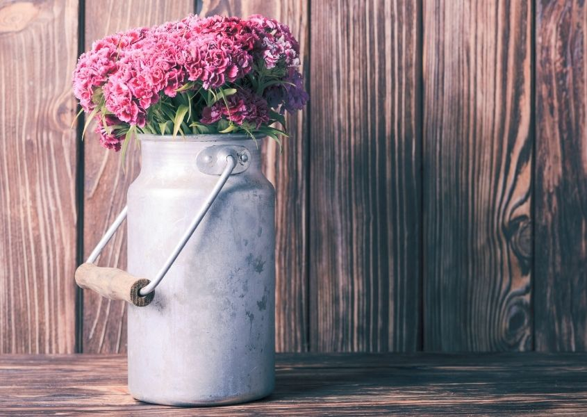 Metal milk churn filled with pink flowers against a rustic wood background