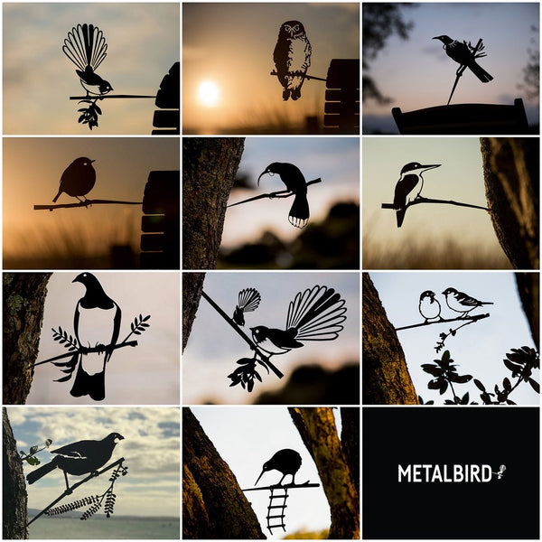 METALBIRD Collection