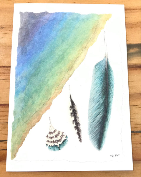 "Greeting Card ""Kereru Feathers"""