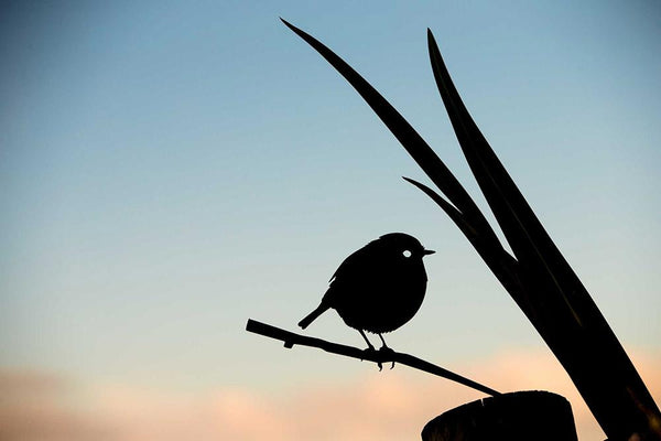 Black Robin - Garden Art