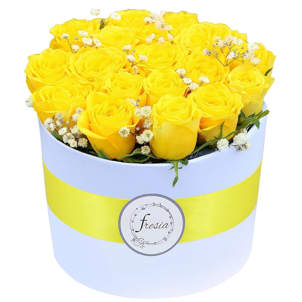 Golden - Yellow Roses