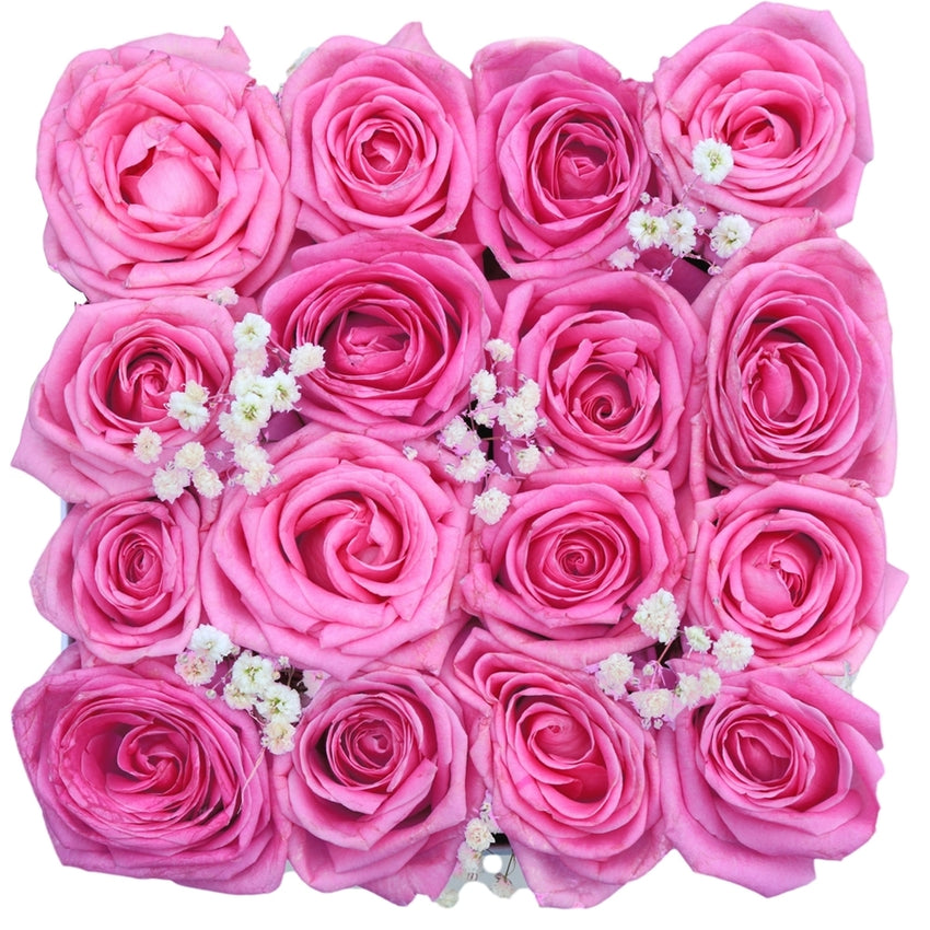 Rose Dream - 16 Pink Roses