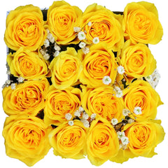 Spring - Send 18 Yellow Roses
