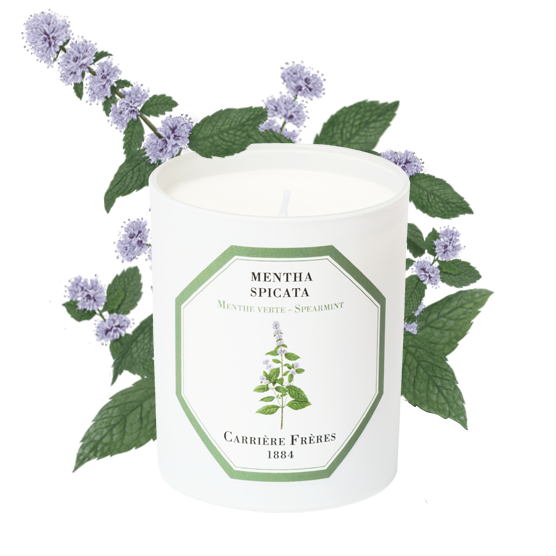 Spearmint- Carriere Frères Candle