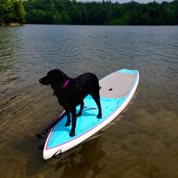 Where to purchase my Stand Up Paddleboard