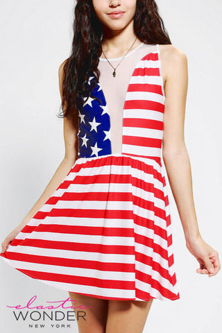 American Flag Stars And Stripes Skater Dress