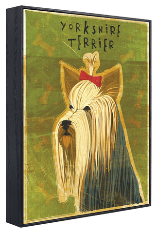 John W. Golden - Yorkshire Terrier (Framed)