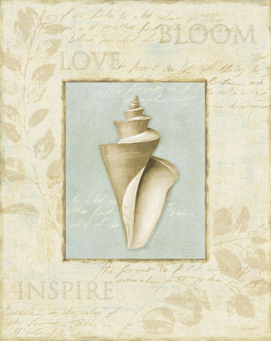 Soothing Words Shells III -  Lisa Audit - McGaw Graphics