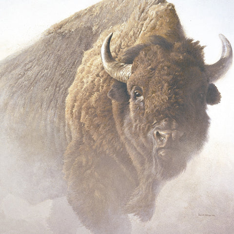 Robert Bateman - Chief (detail)