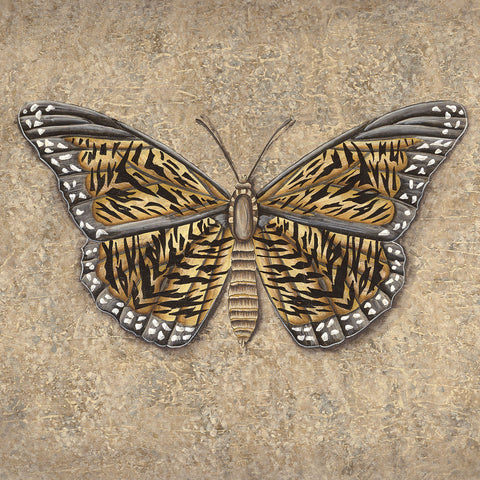 Tiger Butterfly -  Jennette Brice - McGaw Graphics