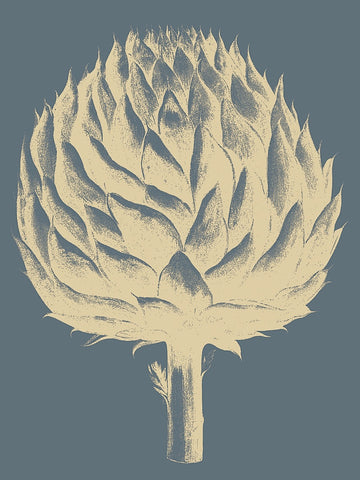 Artichoke 2 -  Botanical Series - McGaw Graphics
