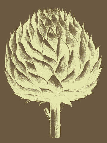 Botanical Series - Artichoke 4