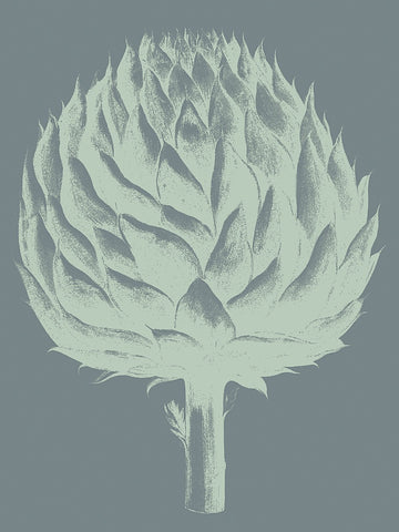 Botanical Series - Artichoke 7