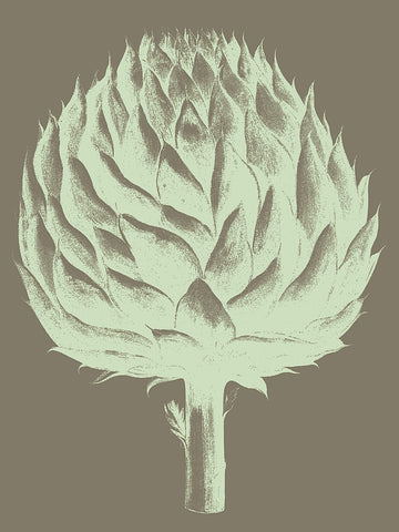 Botanical Series - Artichoke 12