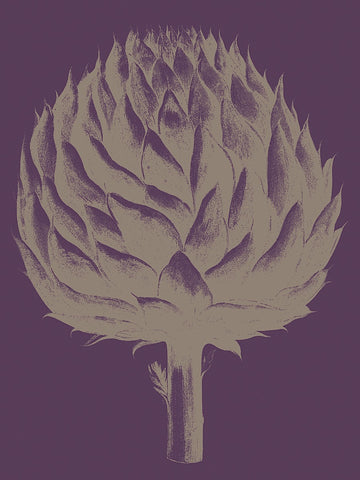 Artichoke 13 -  Botanical Series - McGaw Graphics