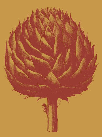 Artichoke 15 -  Botanical Series - McGaw Graphics