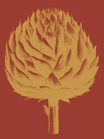 Artichoke 16 -  Botanical Series - McGaw Graphics