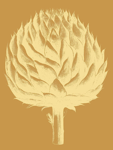 Artichoke 20 -  Botanical Series - McGaw Graphics