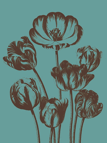 Tulip 5 -  Botanical Series - McGaw Graphics