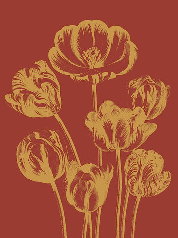 Tulip 16 -  Botanical Series - McGaw Graphics