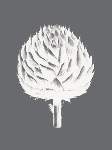 Artichoke (Gray & Ivory) -  Botanical Series - McGaw Graphics