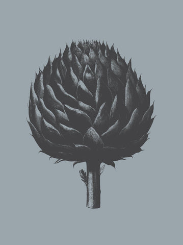 Botanical Series - Artichoke (Slate & Ink)